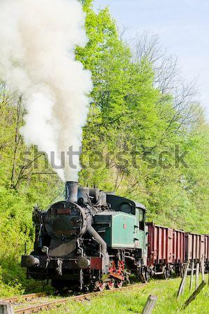 Gőz vonat Szerbia Európa kint Stock fotó © phbcz
