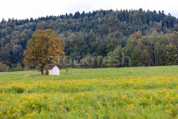 Capela vale República Checa árvore arquitetura europa Foto stock © phbcz