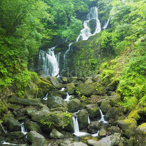 ストックフォト: 滝 · 公園 · アイルランド · 木 · 旅行 · 川