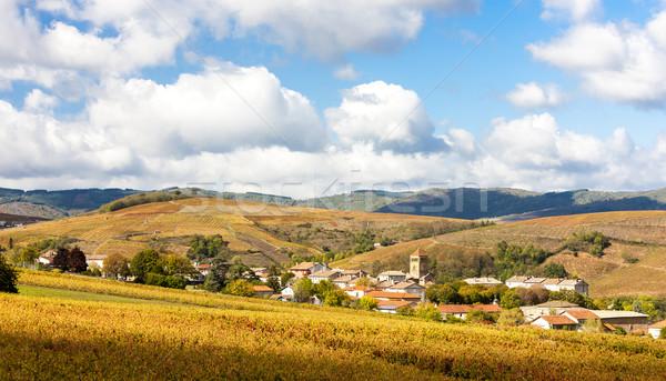 Photo stock: Village · vignoble · paysage · automne · pays · agriculture