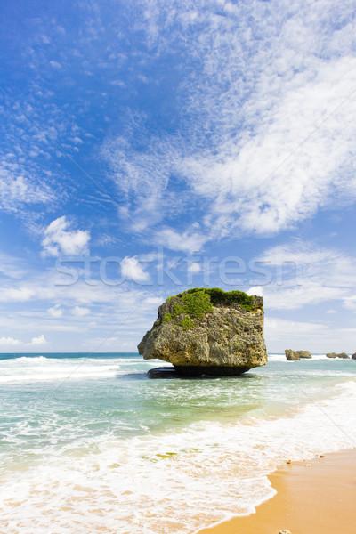 Stock photo: Bathsheba, Eastern coast of Barbados, Caribbean
