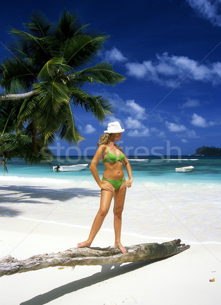 woman at the seaside Stock photo © phbcz