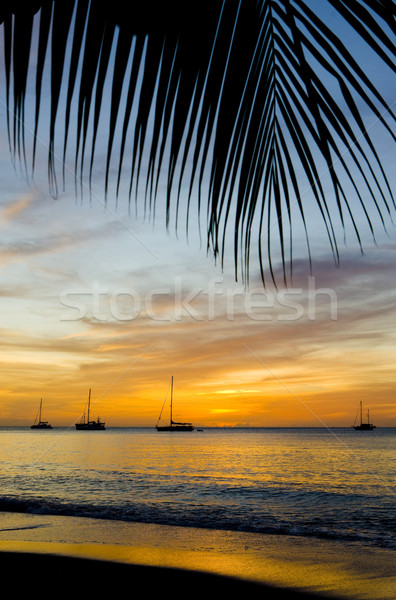 sunset over the Caribbean Sea, Grand Anse Bay, Grenada Stock photo © phbcz