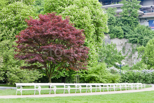 park in Karlovy Vary (Carlsbad), Czech Republic Stock photo © phbcz