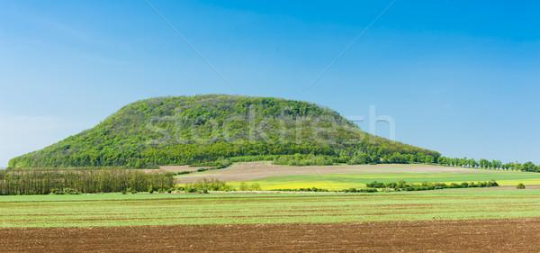 チェコ共和国 国 丘 風景 自然 屋外 ストックフォト © phbcz