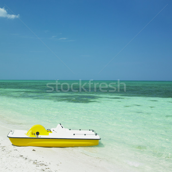 pedal boat, Santa Luc Stock photo © phbcz