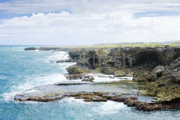 Norte ponto Barbados caribbean paisagem mar Foto stock © phbcz