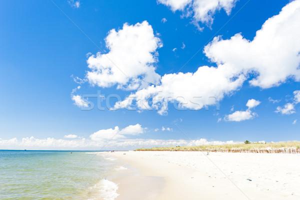 Playa península Polonia verano nube Europa Foto stock © phbcz
