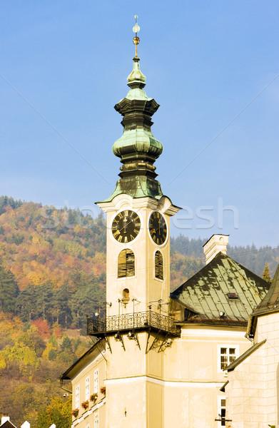 Detail stadhuis Slowakije gebouwen architectuur huizen Stockfoto © phbcz