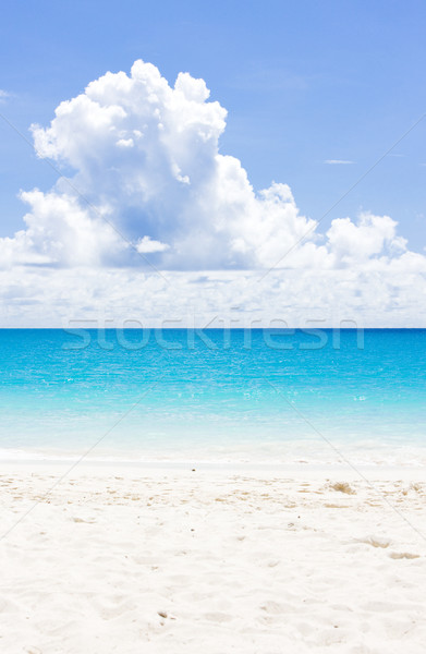 Impresa spiaggia Barbados Caraibi nubi panorama Foto d'archivio © phbcz