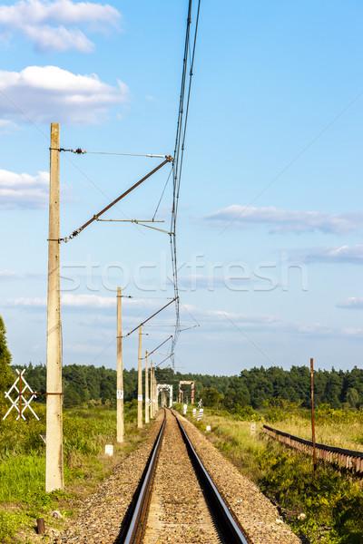tracks, Podlaskie Voivodeship, Poland Stock photo © phbcz