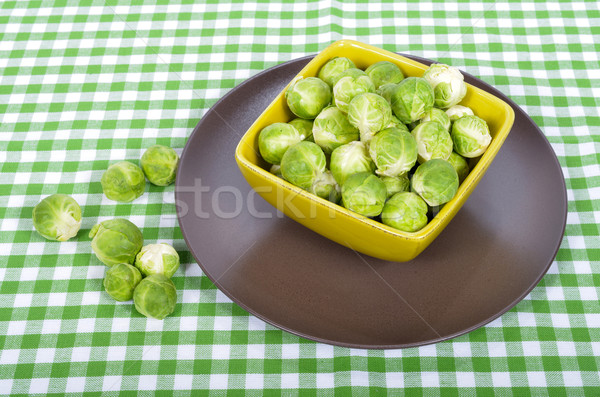 Bruxelas marrom prato verde toalha amarelo Foto stock © philipimage