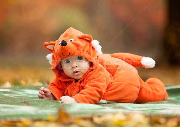 Cute baby boy dressed in fox costume Stock photo © photobac