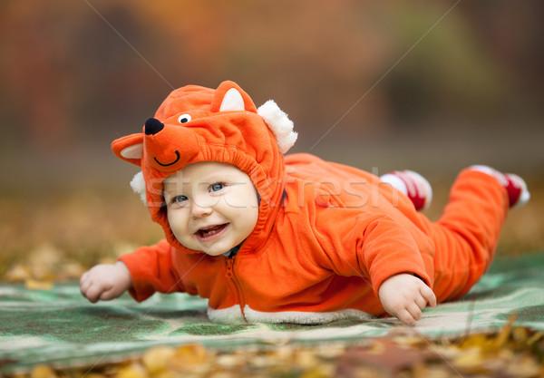 Bebê menino raposa traje outono parque Foto stock © photobac