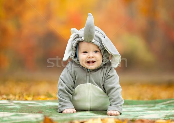 Bebê menino elefante traje outono parque Foto stock © photobac