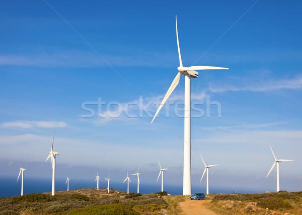 Wind turbines farm Stock photo © photobac