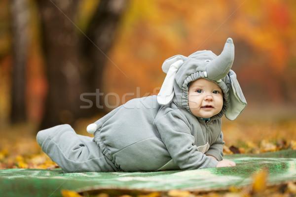 Baba fiú elefánt jelmez ősz park Stock fotó © photobac