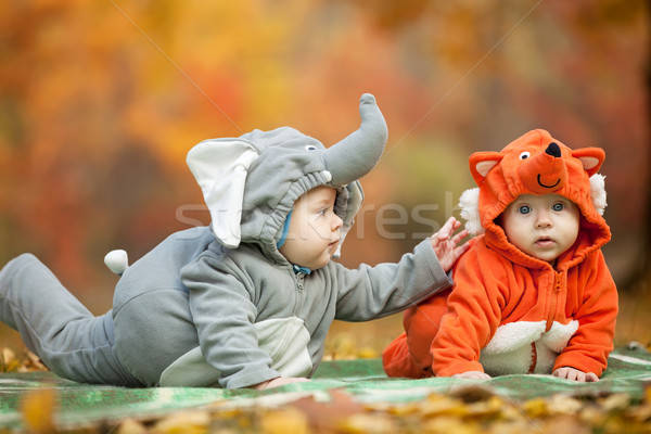 Dois bebê meninos animal parque Foto stock © photobac