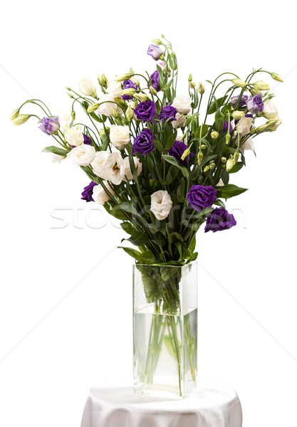 Bouquet of eustoma flowers in vases over white Stock photo © photobac