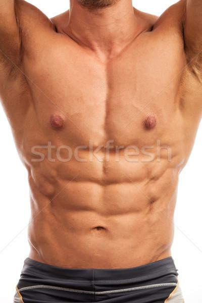 Gövde vücut geliştirmeci beyaz yalıtılmış sağlık güzellik Stok fotoğraf © photobac