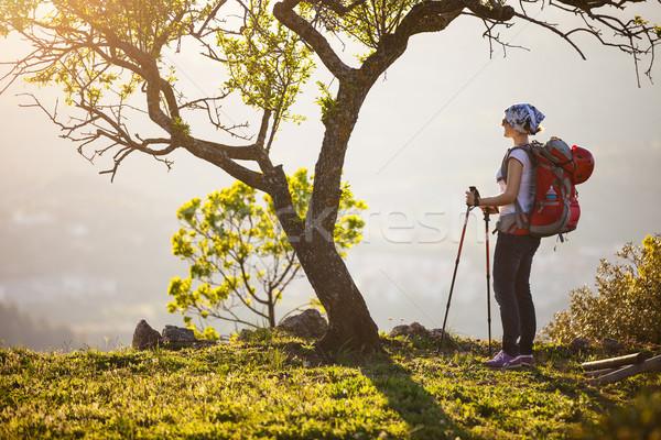 Feminino andarilho em pé penhasco ver Foto stock © photobac