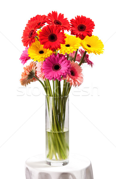 Gerbera flowers in vase isolated over white Stock photo © photobac