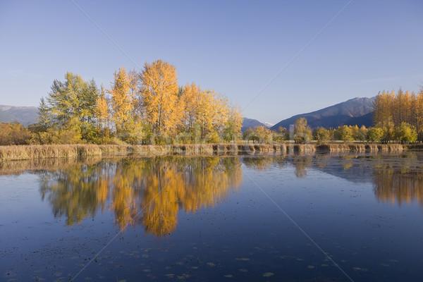 Toamnă culori lac munţi peisaj reflecţie Imagine de stoc © photoblueice