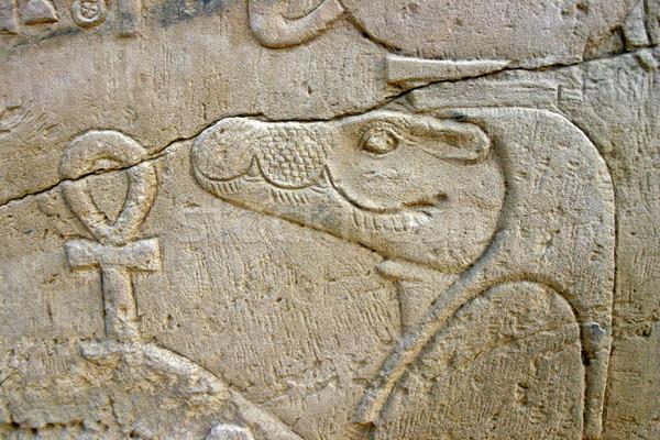 стены рельеф крокодила Бога Египет Сток-фото © photoblueice