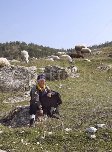 Stock photo: Nomadic sheepherder