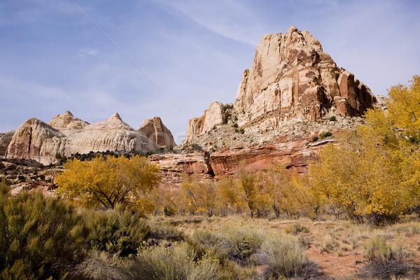 Montagna Utah scala Foto d'archivio © photoblueice