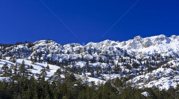 снега покрытый гор Турция центральный Сток-фото © photoblueice