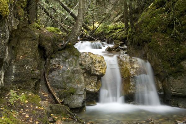 Piccolo cascata bella Foto d'archivio © photoblueice