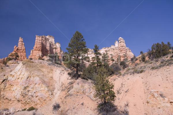 Rock chimneys & Sand Pipes Stock photo © photoblueice