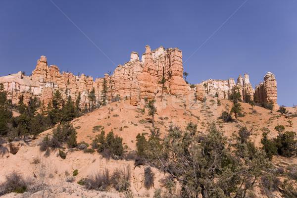 View of a beautiful Mountain Stock photo © photoblueice