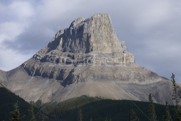 Dusk sunlight on Mountain in Jasper with clouds behind Stock photo © photoblueice