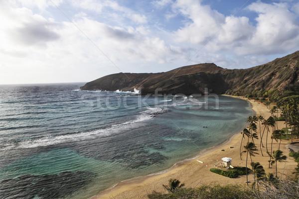 Гавайи можете дайвинг берега воды Сток-фото © photoblueice
