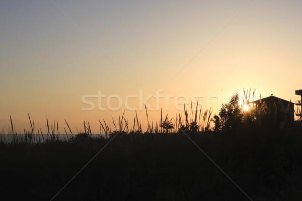 Tramonto mediterraneo spiaggia Turchia alto silhouette Foto d'archivio © photoblueice