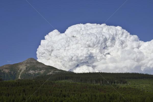 Incendios forestales montana grande cantidad humo otro Foto stock © photoblueice