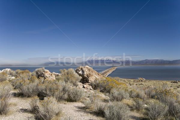 Antelope Island State Park in Utah Stock photo © photoblueice