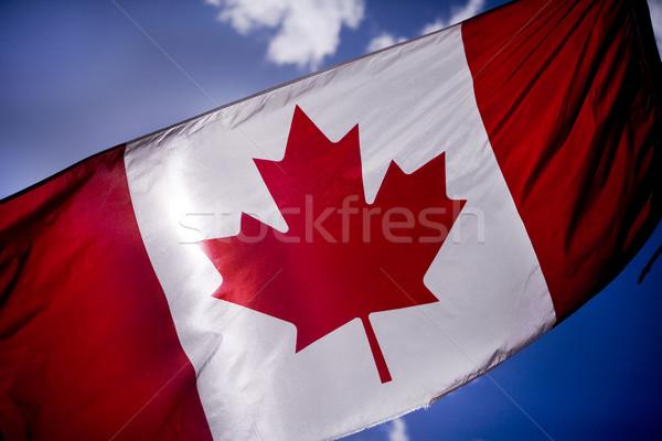 Drapeau canadien bleu rouge Photo stock © photoblueice