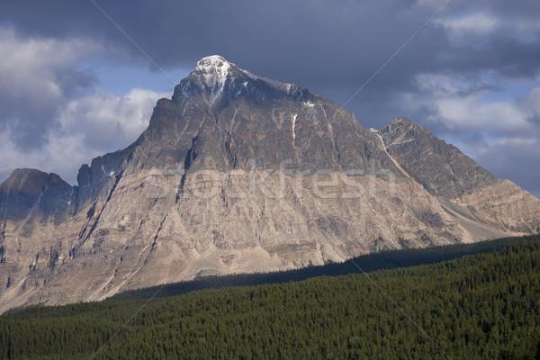 View of Mountain Peak in Jasper National Park Stock photo © photoblueice