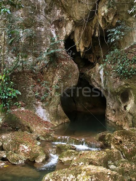 Bejárat barlang Belize Stock fotó © photoblueice