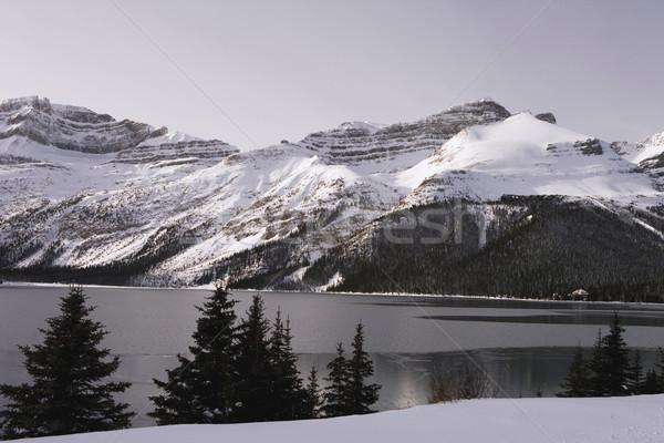 Iarnă lac scena rece vreme Imagine de stoc © photoblueice