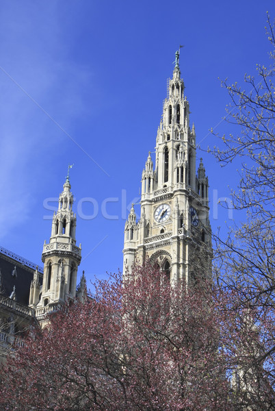 Viennas city hall Neues Rathaus Stock photo © photoblueice