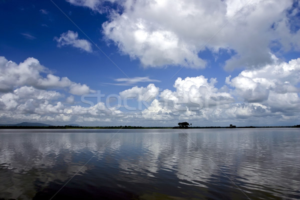Rufiji River in Southern Tanzania Stock photo © photoblueice