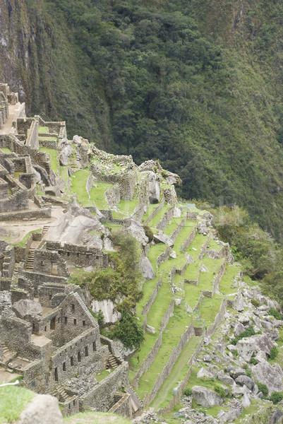 Back side view of Machu Picchu, Peru Stock photo © photoblueice