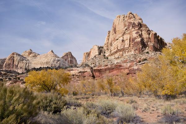 View of a Mountain Stock photo © photoblueice