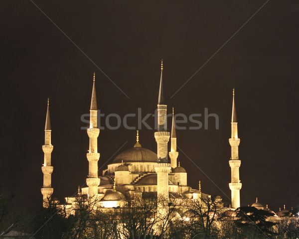 Blue Mosque at night in Istanbul Turkey Stock photo © photoblueice
