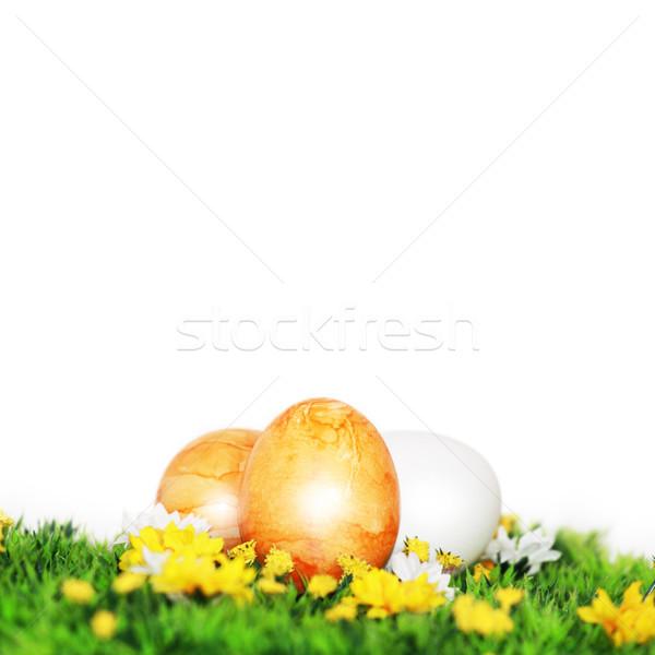 Gelb gemalt Ostereier nice Dekoration Ostern Stock foto © photochecker