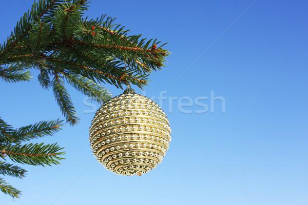christmastime Stock photo © photochecker